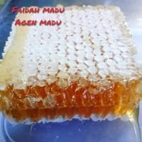 madu sarang melifera asli 1 kg