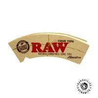 Jual Raw Tips Maestro