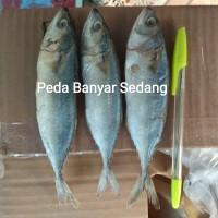 Ikan Asin Peda 1kg Murah Enak