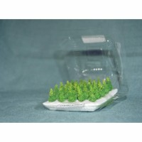 Miniatur Pohon Cemara Kepyur tinggi 3 cm/ maket pohon cemara