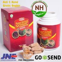 Obat Alergi - Asma - Batuk - Walatra Sarang Semut 100 Kapsul With Nano