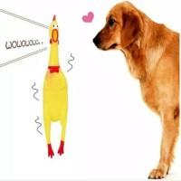 petshop Mainan kunyah gigit anjing shrilling chicken size XL. Dog