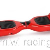 TErlaris Smart Balance Wheel / Smartwheel / Airwheel / Runwheel /