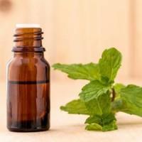 100% Pure Peppermint Essential Oil 30 ml