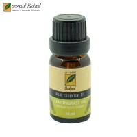ESSENSIAL OIL & AROMATHERAPY LEMONGRASS (SEREH DAPUR) 10 ML