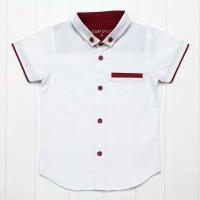 MAXKENZO hem kemeja baju katun anak bayi 1-10 tahun putih polos