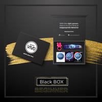 VIVO BLACK BOX -BEGINNER-PAKET