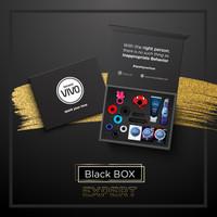VIVO BLACK BOX - EXPERT- PAKET