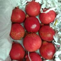 BUAH DELIMA MERAH / RED POMEGRANATE