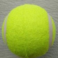Bola Kasti / Bola Tenis - Bola Tennis Lapangan