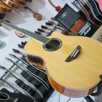 gitar akustik apx500ii /