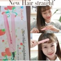 Alat pelurus rambut