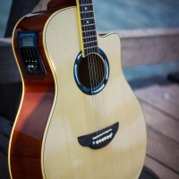 Gitar Akustik Elektrik APX Natural EQUALIZER TUNER Bonus TAS GITAR