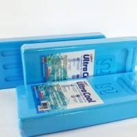 Pembeku Es - Ice Pack Cool Box - pendingin asi portable MASLAHA KECIL