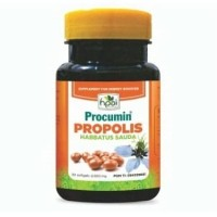 Procumin Propolis Habbatussauda HPAI (Obat Herbal Ginjal dan Liver)