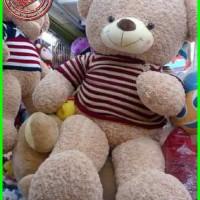 boneka beruang super gede import Limited