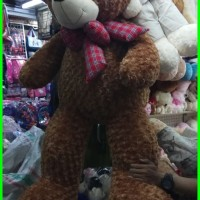 boneka bear super besar Limited