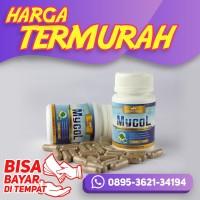 Obat-Kuat Obat Lemak Darah Herbal Mycol