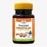 PROCUMIN PROPOLIS HNI-HPAI