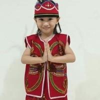 Baju Dayak Anak Pakaian Adat Dayak Kalimantan Kostum Karnaval