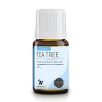 10ml Organic Tea Tree Essential Oil 100% Pue and Natural | Nusaroma
