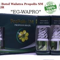 Propolis SM - Propolis Brazilian 100% ASLI ORIGINAL