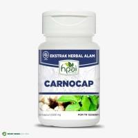 TERMURAH Carnocap HPAI Obat Herbal Kangker