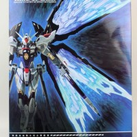1/100 Strike Freedom Gundam Wing of Light Option Set