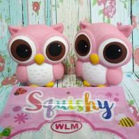 Squishy Rainbow Big Eyes Owl licensed by Sunny Squishy