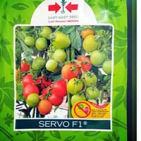 Benih / Bibit Tomat Servo 150 butir Cap Panah Merah