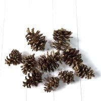 10 pc bunga pinus dekorasi natal warna gold atau asli