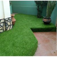 Fantasy Karpet Rumput Palsu 50x100cm - Artificial Grass - Sintetis
