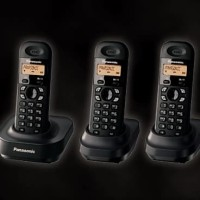 Panasonic DECT Cordless Phone KX-TG1313