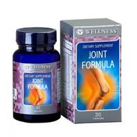 Wellness Joint Formula 30s I Glucosamine Chondroitin I Tulang & Sendi