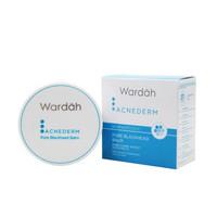 Wardah Acnederm Pore Blackhead Balm 20 gr