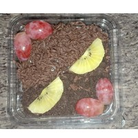 Salad Buah Oreo Coklat 500ml
