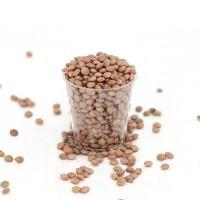 Organic Brown Lentils 250 Gram
