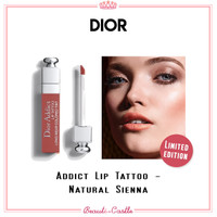 DIOR ADDICT LIP TATTOO Long-wear colored tint 541 Natural Sienna