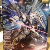 Gundam mg 1/100 freedom mobile suit zgmf x10A