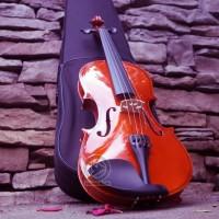 Violin / biola cavaliers CV-1A Solid 3/4 + Hardcase + Bow + Rosin