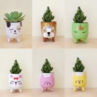 Paket bundle Pot & Kaktus Mini Animal Leggie Series