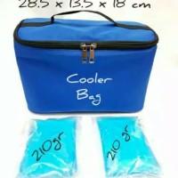 Tas Asi Murah/Cooler Bag Asi Avia/Penyimpanan Asi Free 2 Ice gel Blue