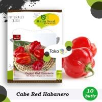 Benih-Bibit Cabe Super Pedas Red Habanero (Haira Seed)