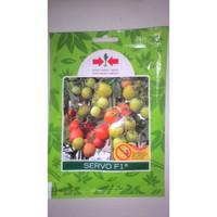 Benih Sayuran Tomat Servo