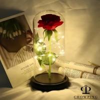 Lampu Tumblr Kawat LED / Lampu Hias Baterai LED Kawat