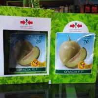 Benih Tanaman Melon Gracia F1 Tahan Virus - Bibit Melon Daging Putih