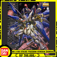 MG 1/100 Strike Freedom Gundam (BANDAI)