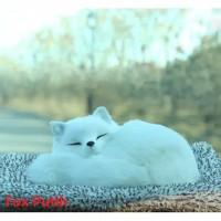 Arang Bambu Penghilang Bau Mobil Pajangan Kucing Kitty Cat