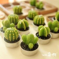 lilin kaktus cactus candle hias dekorasi