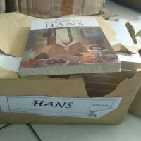 Novel Hans : Risa Saraswati